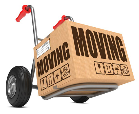 Calgary quality movers